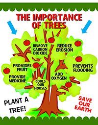 Make A Forest For People Poster Forest Conservation Poster Ideas