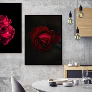 Pack de 2 Tableaux d'art Nature