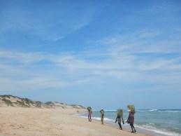 casa-frenzy-beach