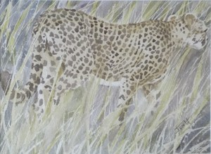 Cheetah Camouflage, 55cm x 46cm (framed), watercolour on paper