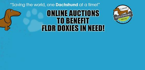 Online Auctions to Benefit FLDR Doxies in Need