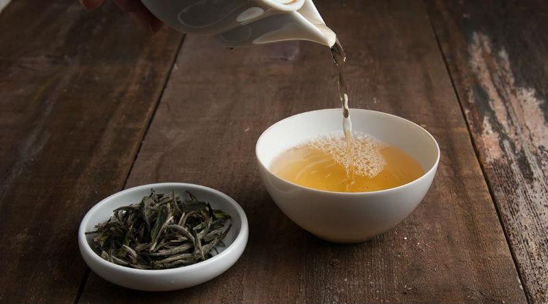 Té blanco ¿Qué propiedades y beneficios tiene?