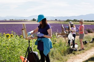 Capturing the beauty of Provence