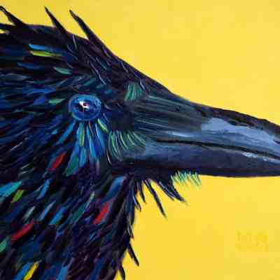"""Wet Crow. Oil. 16""""X20"""". Available."""