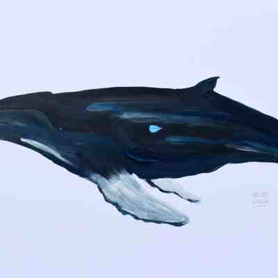"""Humpback. Acrylic on Fine Finch Paper. 12""""X18"""". Original Available."""