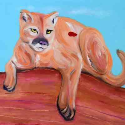 "Big Cat. Original Oil. 16""X20"". Original Available."