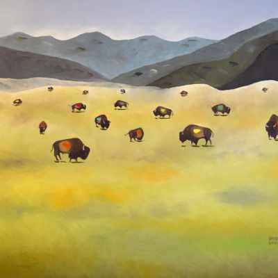"""Where the Buffalo Roam. Oil. 36""""X48"""". Not Available for Sale."""