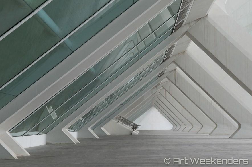 Valencia's Ciudad de las Artes - Spain_Valencia_CiudaddelasArtesyCiencias_Lydian_Brunsting_AW11
