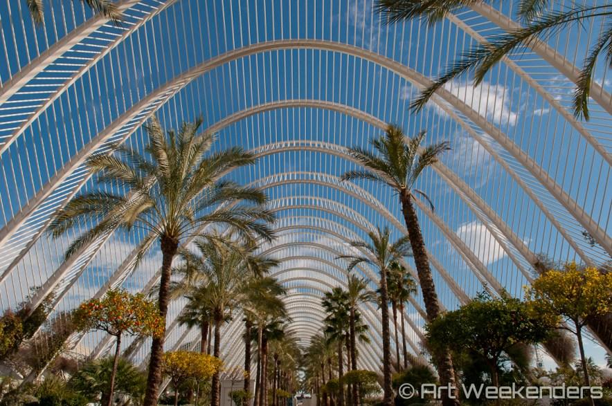 Valencia's Ciudad de las Artes - Spain_Valencia_CiudaddelasArtesyCiencias_Lydian_Brunsting_AW3