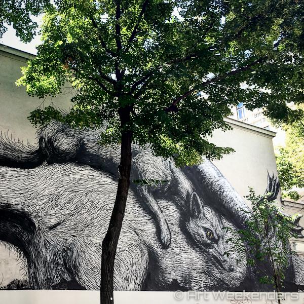 Roa Street art in Vienna Austria