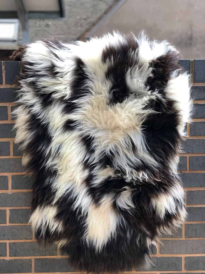 Natural colour sheepskins - Soft, fluffy, in natural colour, odourless
