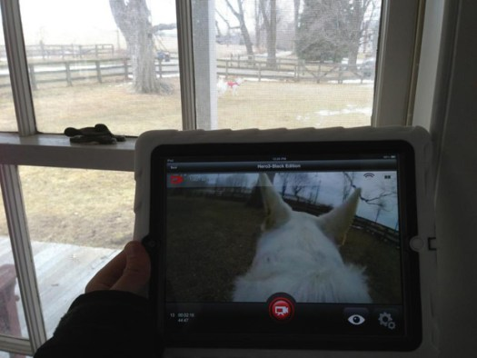 GoPro Hero3 Black iPad App on Petcurean video shoot by Keith Hopkin