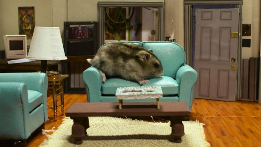 hamsterfeld couch by keith hopkin