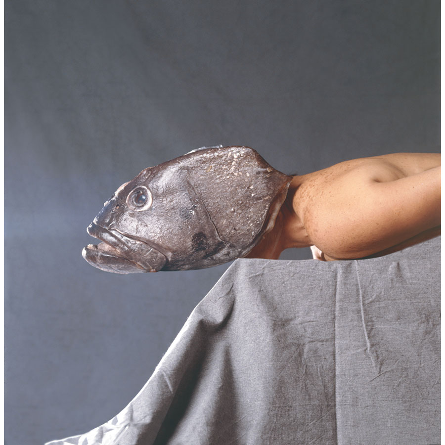 woman with fish head laying on table