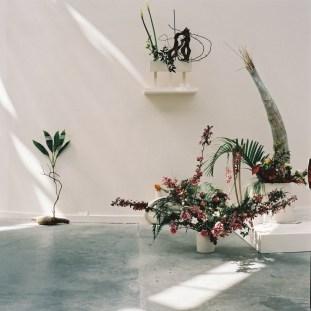 Camille Henrot - Est-il possible d'être révolutionnaire et d'aimer les fleurs?
