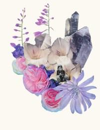 Looking into flowers - Clare Celeste Börsch