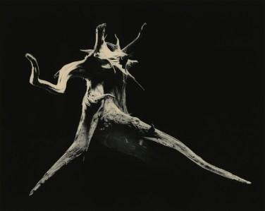 Shizuka=Cleanse - Masao Yamamoto