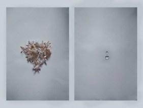 Valerio Eliogabalo Torrisi - Something about life
