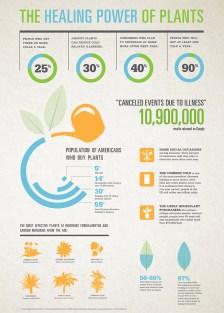 Natasha Katz - Infographic