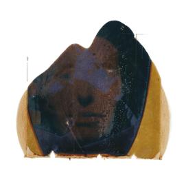 Paolo Gioli - Polaroid