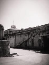 Il progetto SFaSE - Un dialogo tra artista ed architettura storica
