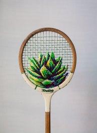 Aloe Racket