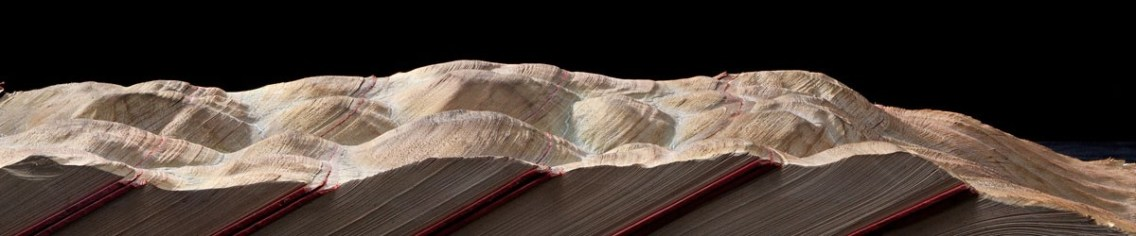DESERT OF UNKNOWING. 2016. Carved books, inks, pigments. 39 x 11,5 x 5 inches. Photo Alain Lefort2