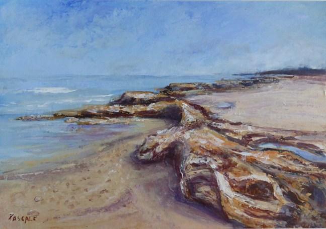Weekly Challenge 2 – Dundee Beach