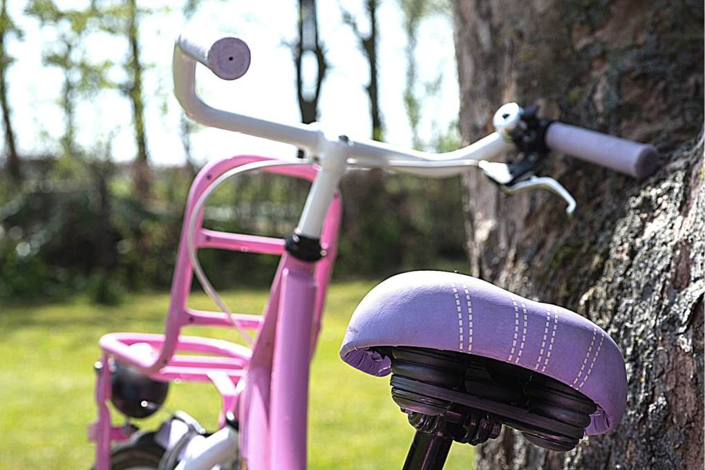 Purple and pink bicycle leaned against a tree ready to be used for exercise