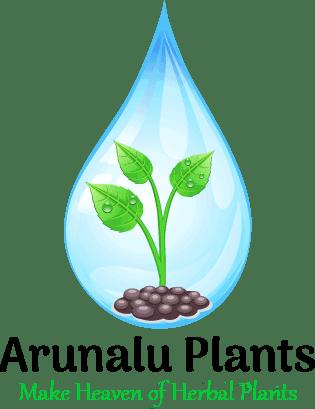 arunalu plants logo