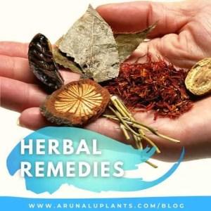 herbal remedies blog