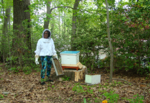 The Beekeeper: Janice Fisher on her first day of beekeeping, has learned a lot in the last four years, especially that flowered pants aren't a great idea. Photo: Janice Fisher
