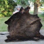 Katherine and her tanned buffalo hide by Ray Haas