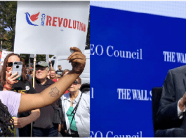 Two photos side by side with McKayla Wilkes at a rally holding a poster that says Our Revolution and Steny hoyer on the left with a backdrop that says CEO Council and Wall St. Journal.