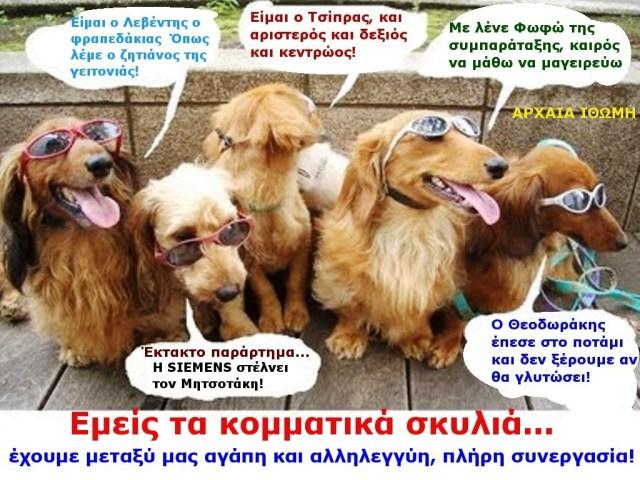 ΚΟΜΑΤΟΣΚΥΛΑ 2