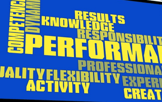 phases of MSL Performance Reviews