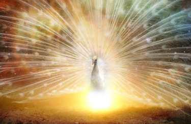 Consultation d'Astrologie en ligne - Chance et Réussite Thème Astral