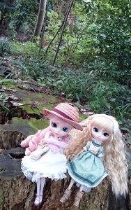 Pullip Forêt Niigata