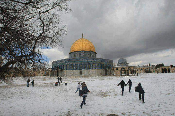 https://i2.wp.com/www.as.uky.edu/sites/default/files/blogs_images/blog_palestine_snow.jpg