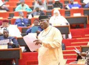 Senator Ovie Omo-Agege, Deputy President of the Senate