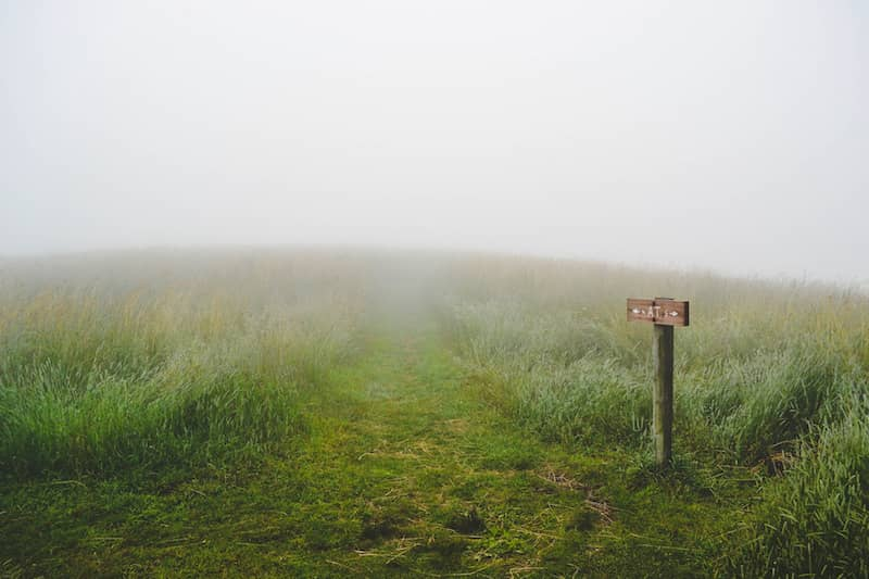 Trail through the mist: no idea where I am or where I'm going