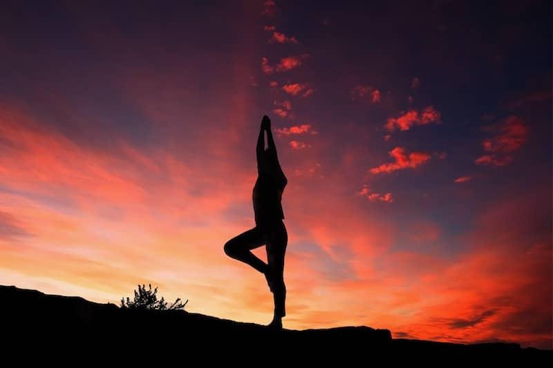 Boris the Gitbit says yoga is not exercise.