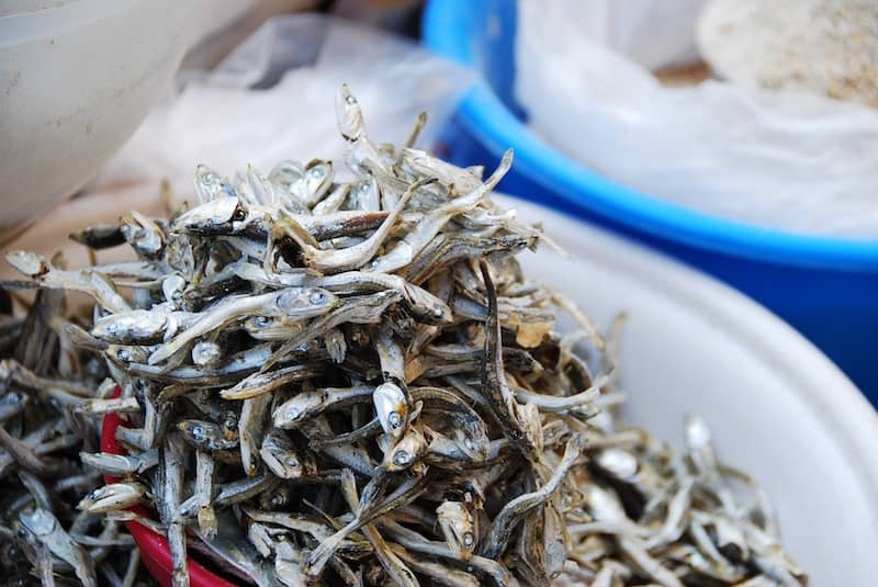 Dastardly schemes involving anchovies