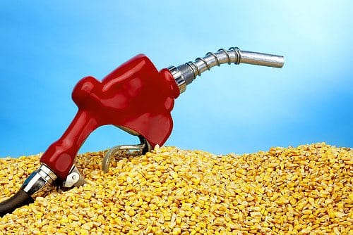 ASaP Ethanol and Bio Gas Production