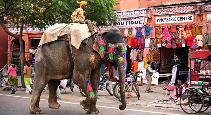 Mochila descansando na Índia