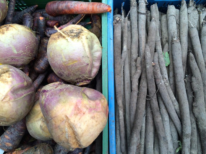 Autumn vegetables at a market