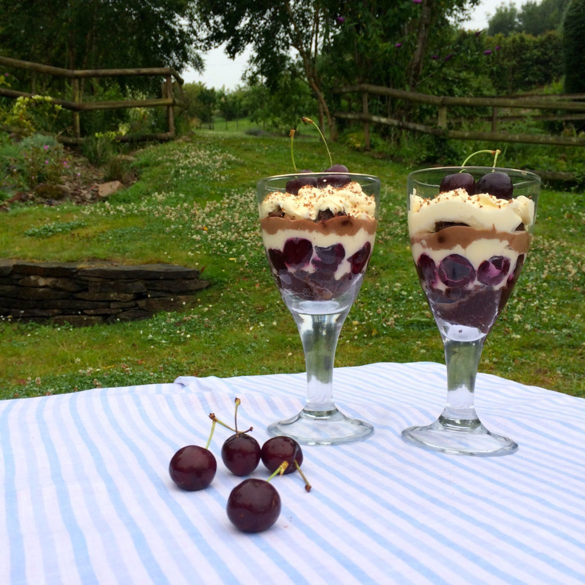 Two glasses of Black Forest Trifle
