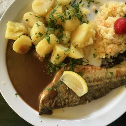 A white plate with fried fish, boiled potatoes, a thick brown sauce and cabbage salad on it