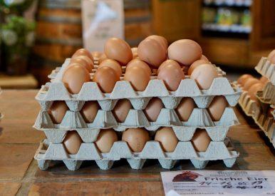 Eggs stacked in open boxes at Domäne Mechtildshausen
