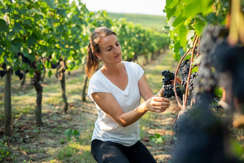 Portrait of Janine Brüssel in a vineyard